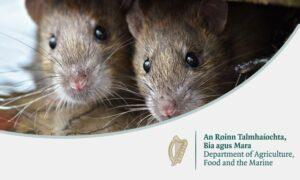 Toxic Baiting rules-Owl Pest control Ireland
