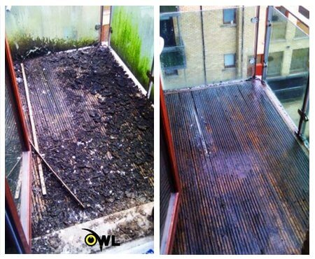 bird-cleaning-service-before-after-specialist-cleaning-services - Owl Pest Control Dublin