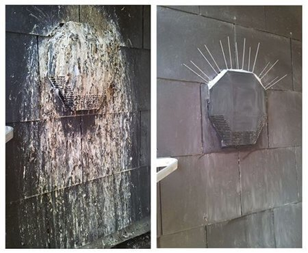 bird-droppings-before-after-specialist-cleaning-services-owl-pest-control-dublin