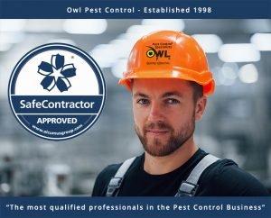 owl-pest-control-technician-safecontractor=Owl Pest Control Dublin