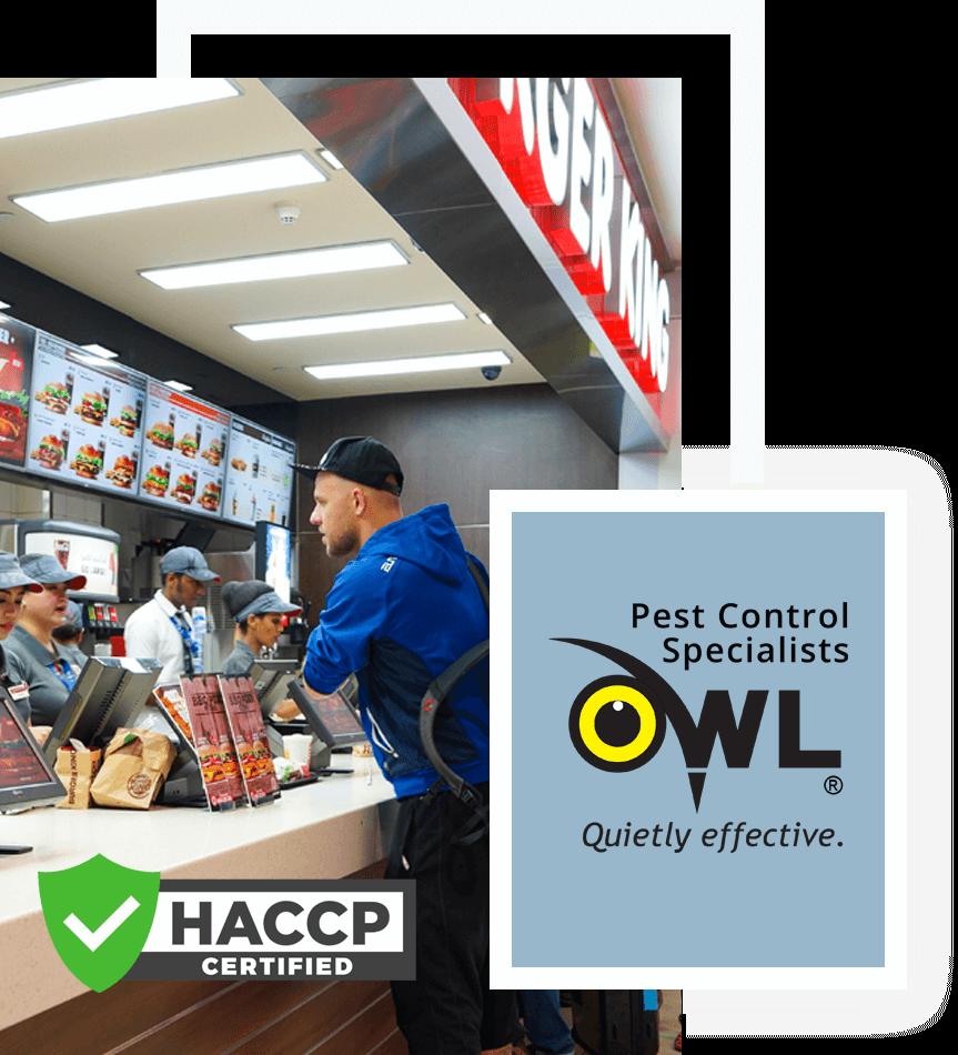 -fast-food-take-away-Owl pest control Dublin