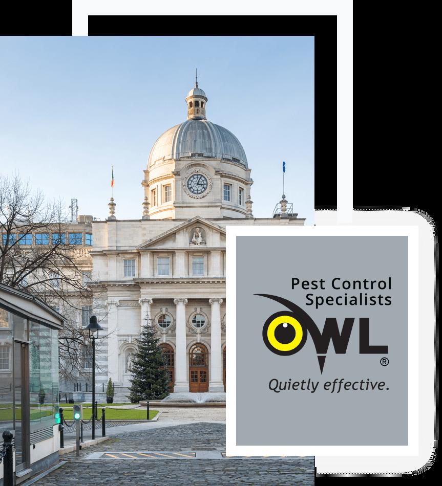 pest-control-services-for-public-government-buildings - Owl pest control Dublin