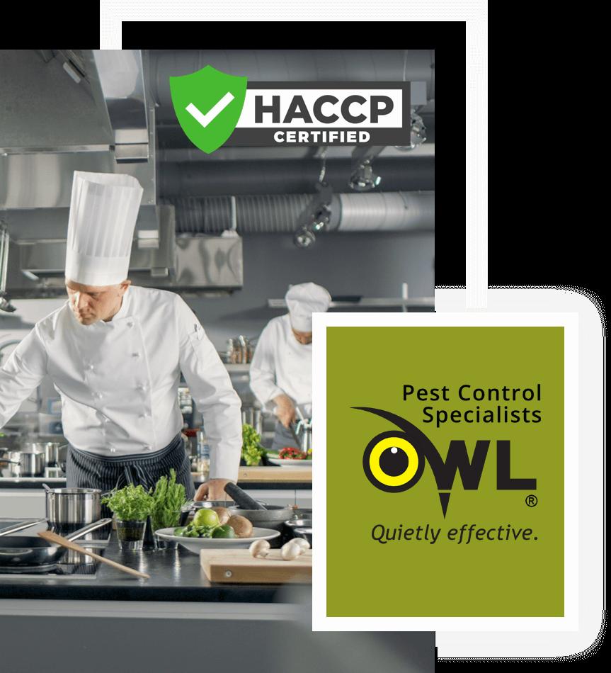 pest-control-services-for-restaurants-Owl Pest Control Dublin