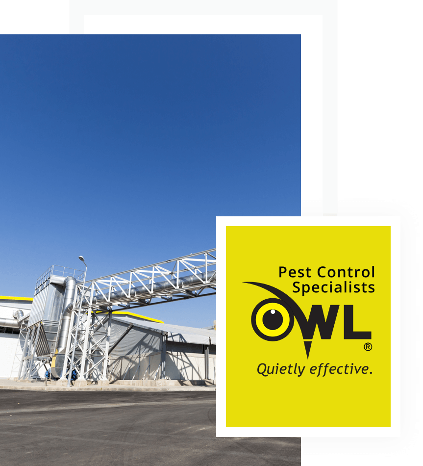 pest-control-services-for-waste-management-facilities-Owl Pest Control Dublin