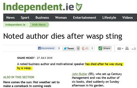 Man-Dies-after-wasp-Sting-in-His-Garden - Owl Pest Control Dublin