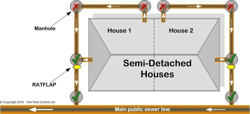 Rat Flap Sewer Installation