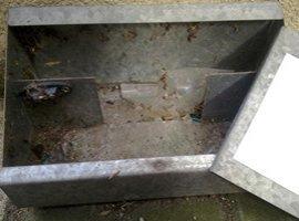 External Bait box for Rodenticide - Owl pest control Dublin
