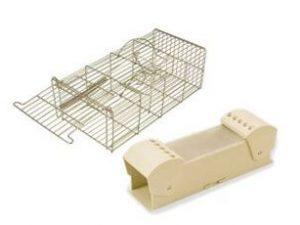 Live Mouse Traps