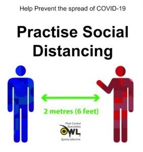 Practise Social Distancing - Owl Pest Control