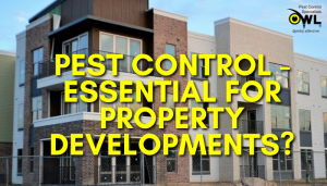 pest control - essential for property developments - Owl pest control Dublin