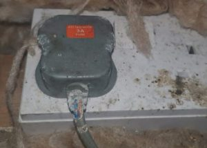 Rat gnawed wire plug in an attic - Owl pest control Dublin