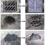 Rodent proofing - Owl pest control Dublin