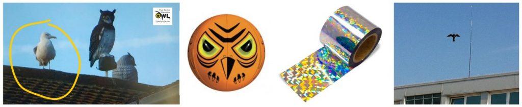 Visual Bird Deterrents - with various level of success - Owl Pest Control Dublin